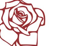 1879_media_graphic_design_rose